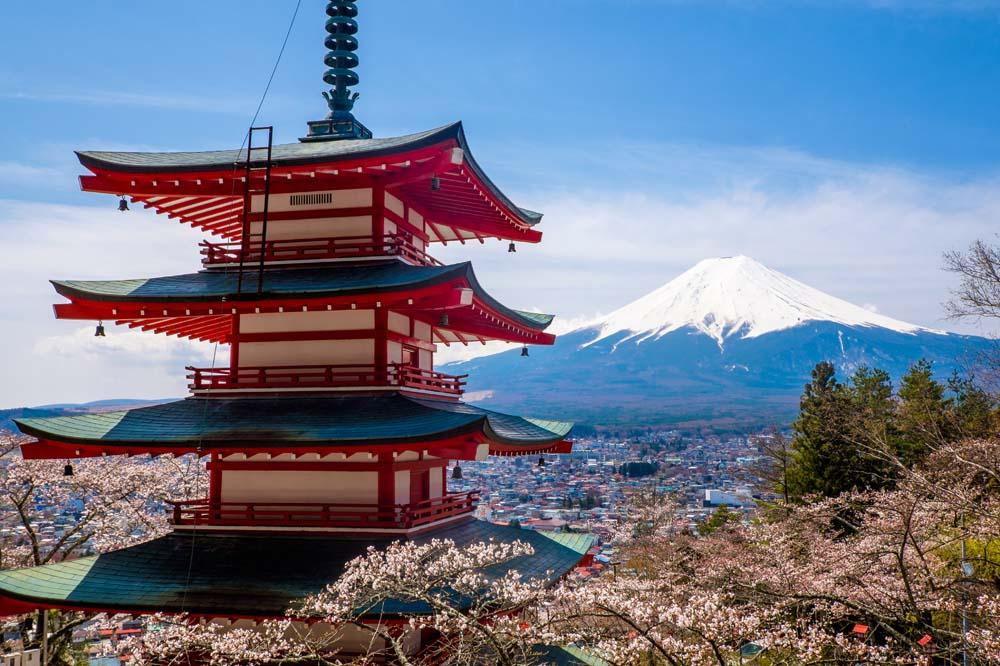 【花见双都】-东京-富士山~芝樱-京都-奈良-神户